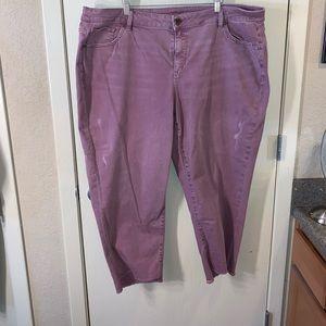 Purple/rose pink ankle jean